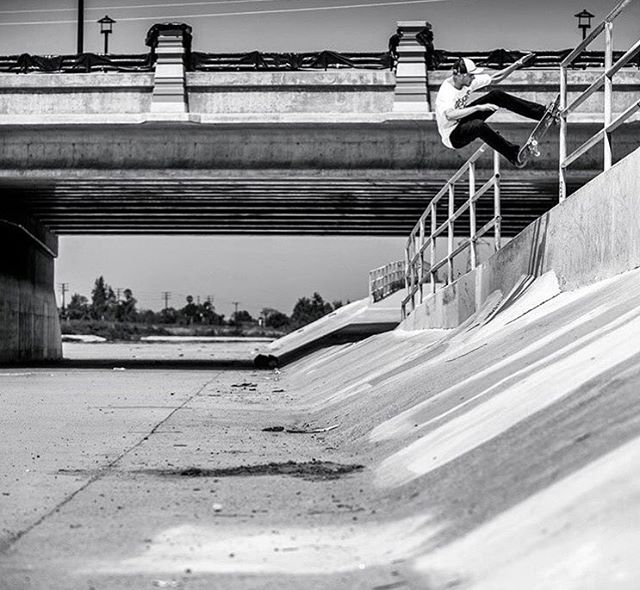 @madarsapse taking this pole jam to fakie in a very stylish manner >>>
