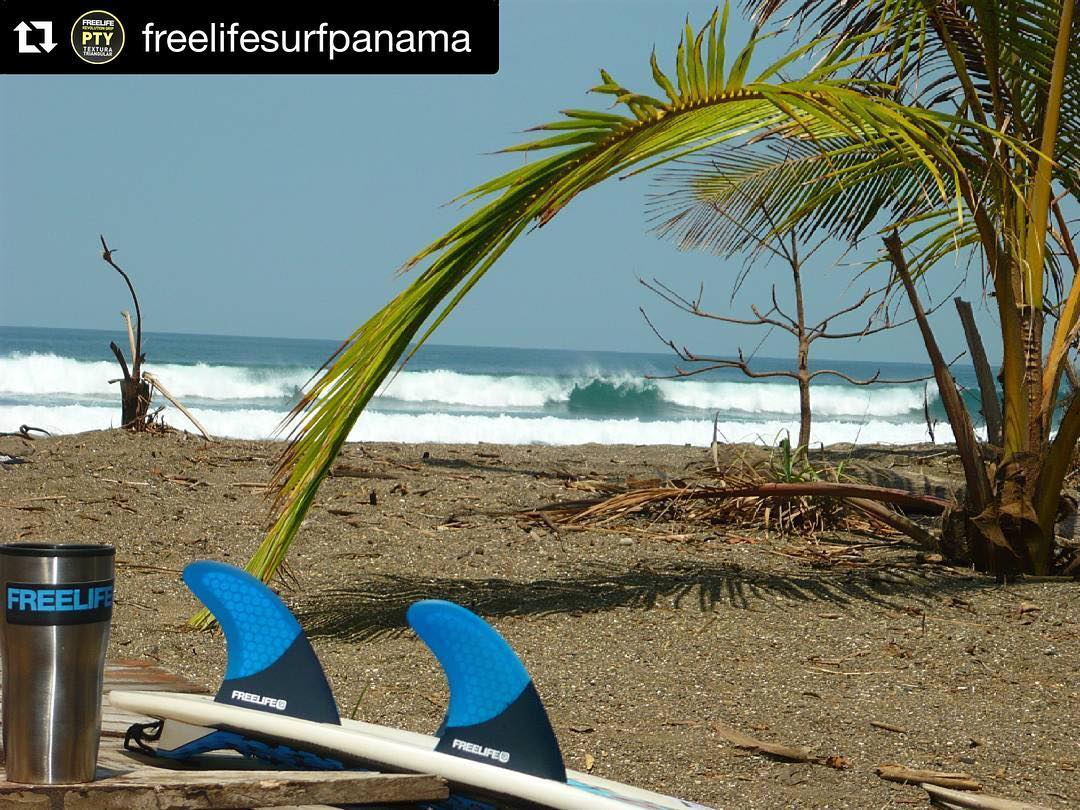 #Repost @freelifesurfpanama with @repostapp. ・・・ FREELIFE Do you need something more.. is #FREELIFE #allyouneedisfreelife #panama #grips #leash #fins #cover #waxultrastick #wax #freelifesurfpanama #freelife #freelifesurf  #thisispanama #visitpanama...