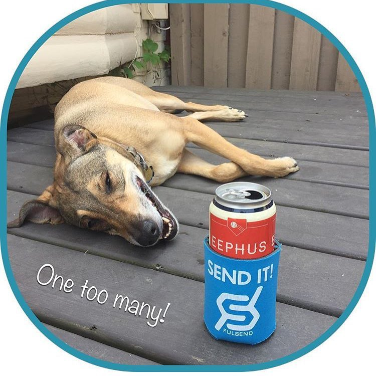 @expatkatb #friendnotfood #justsendit #toronto #dogs #beerthirty #weekend #tgif