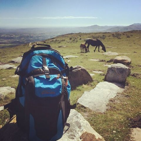 Hiking in the Pyrenees Mountains on the border of Spain and France with the Cascade backpack and cooler!  Wild horses roaming in the background. Thanks for the awesome shot Tyler! #getoutside #travel #adventure #xplorewild #hiking #backpacks #coolers...