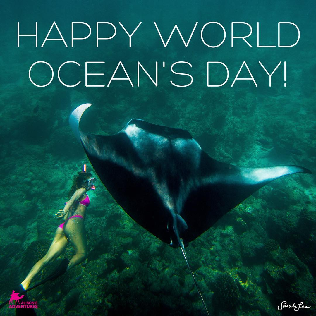 A day to love the water around us, it's in all living things, it all flows together, and we are all connected through it! Happy World Ocean's Day!