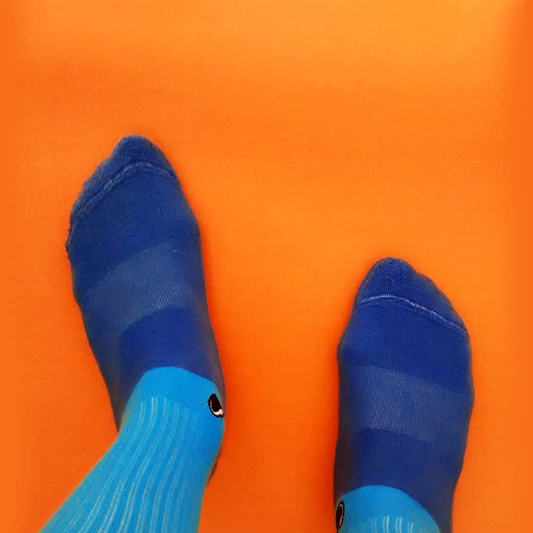 Esta noche combatí el frío y hacele el aguante a #LaSelección en la #CopaAmérica poniéndote unas #BlueSky en tus pies.  Link en bio para adquirirlas. . . #OliverSocks #Oliver #Medias #Socks #Argentina #Color #Diseño #Pies #Naranja #Complementarios...