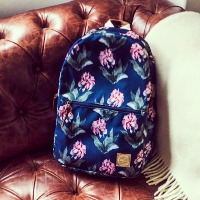 City Backpack Rose Battle, si, su nombre es tan lindo como ella