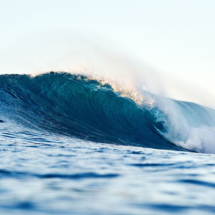 Mind surfing our way through this one #WorldOceansDay