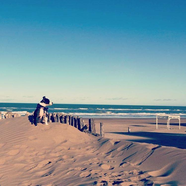 Y un dia ella conocio el mar