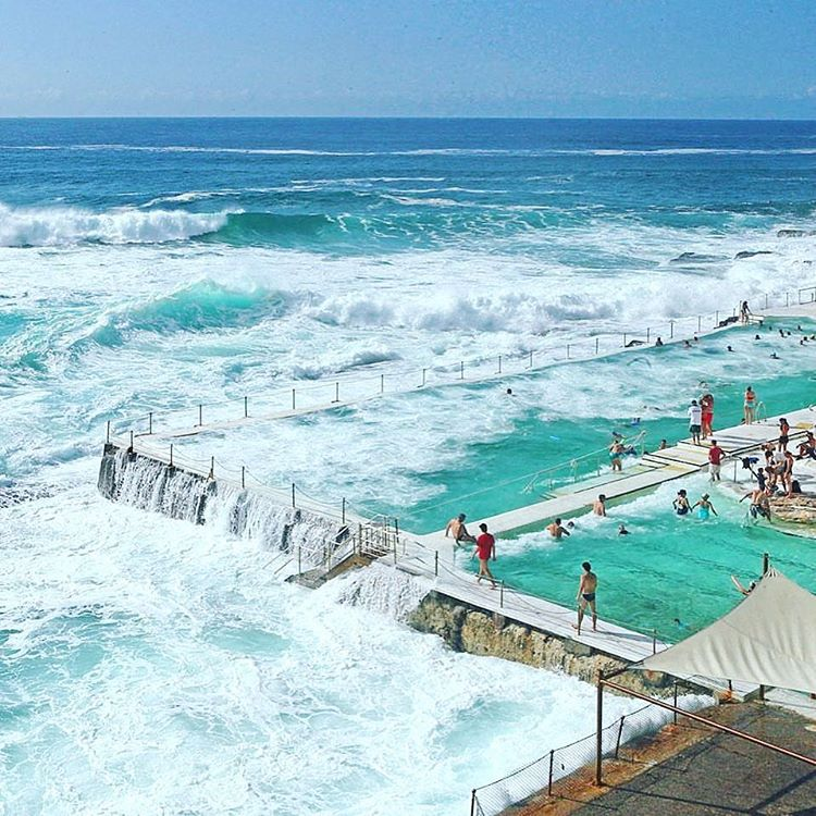 TAKE A DIP ON THE WILD SIDE  OKIINO apparel has UPF 50+ - great for all your wild adventures! #repost @condenasttraveller - WOW. Talk about an invigorating dip - this is surely the world's most dramatic swimming pool, Bondi Icebergs in #Sydney, which...