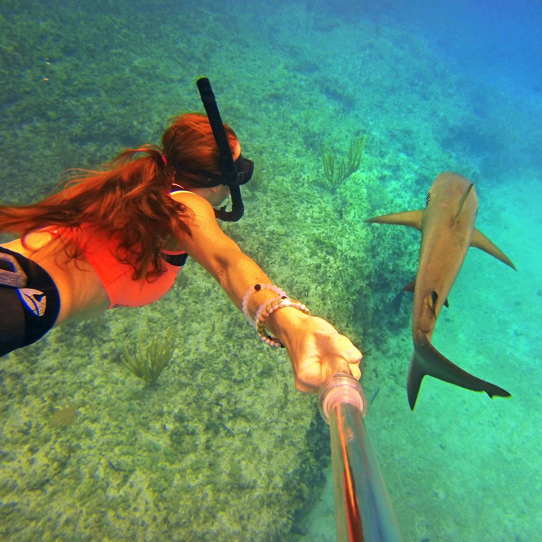 Happy Shark Week! Photo by @sharksneedlove. Shot with GoPro HERO4 and GoPole Evo. #gopro #gopole #gopoleevo #sharkweek