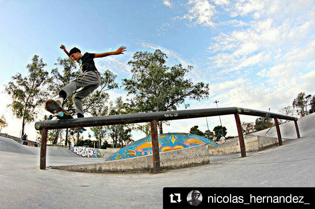The One and Only! Nico☇ #Repost @nicolas_hernandez_ with @repostapp ・・・ Lipes de front en el hermoso #pqs @gotchaarg @shineskateboarding @niteshoes  #arisetrucks  #believeskateboards  #Skateboarding