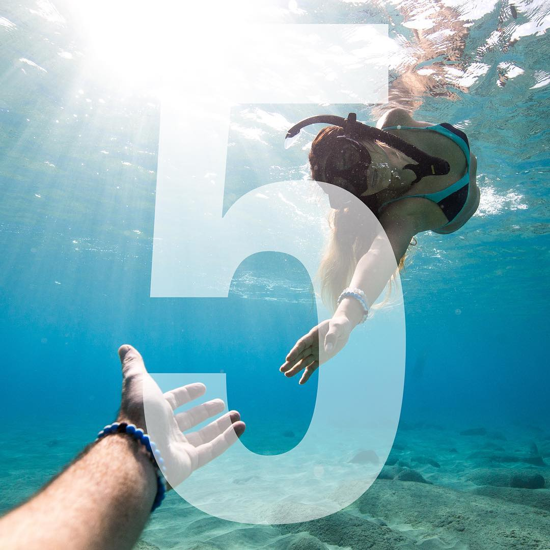 5 days left to get the Shark Lokai and support @oceana. Head to the link in our bio to learn more! #sharkweek