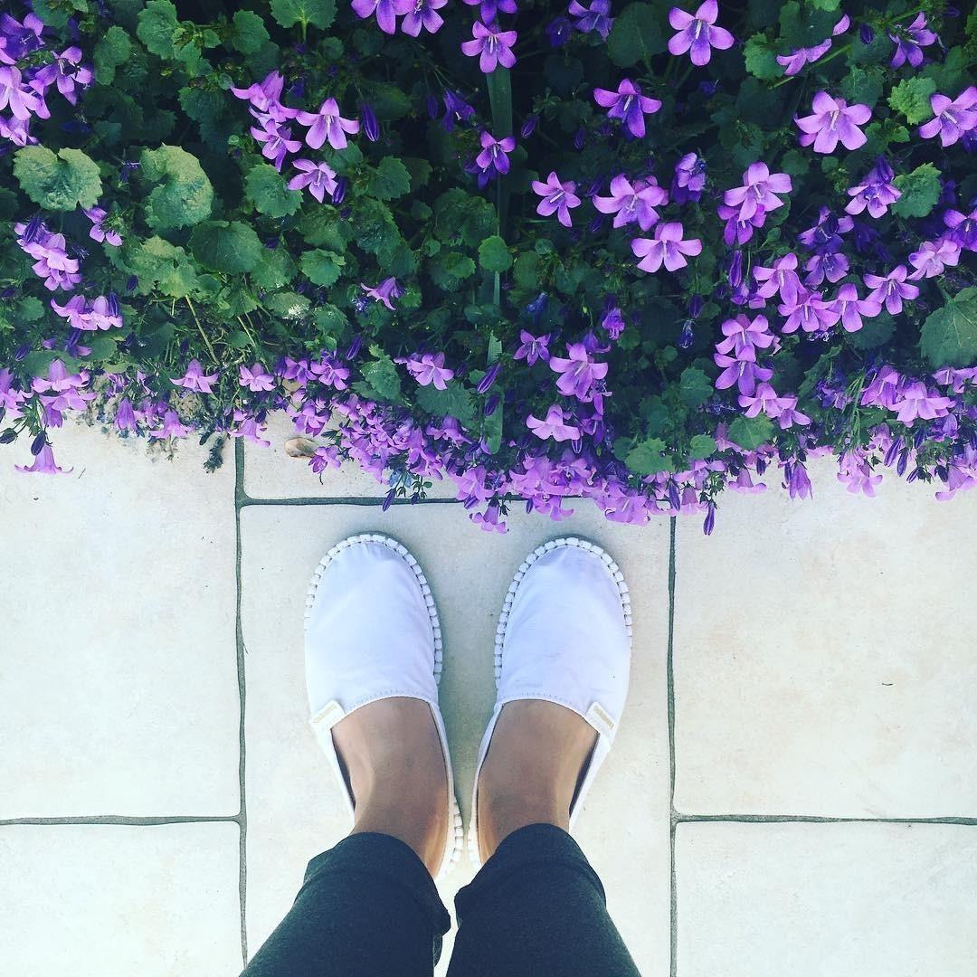 #TôDeHavaianas #HavaianasMoment #VoyConHavaianas #flowers @sofiasds