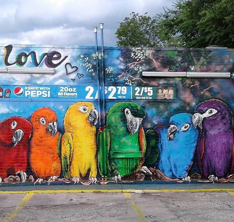 @jmuzacz #northloop • • #ATX #austintx #texas #tx #spratx #art #streetart #mural #birds