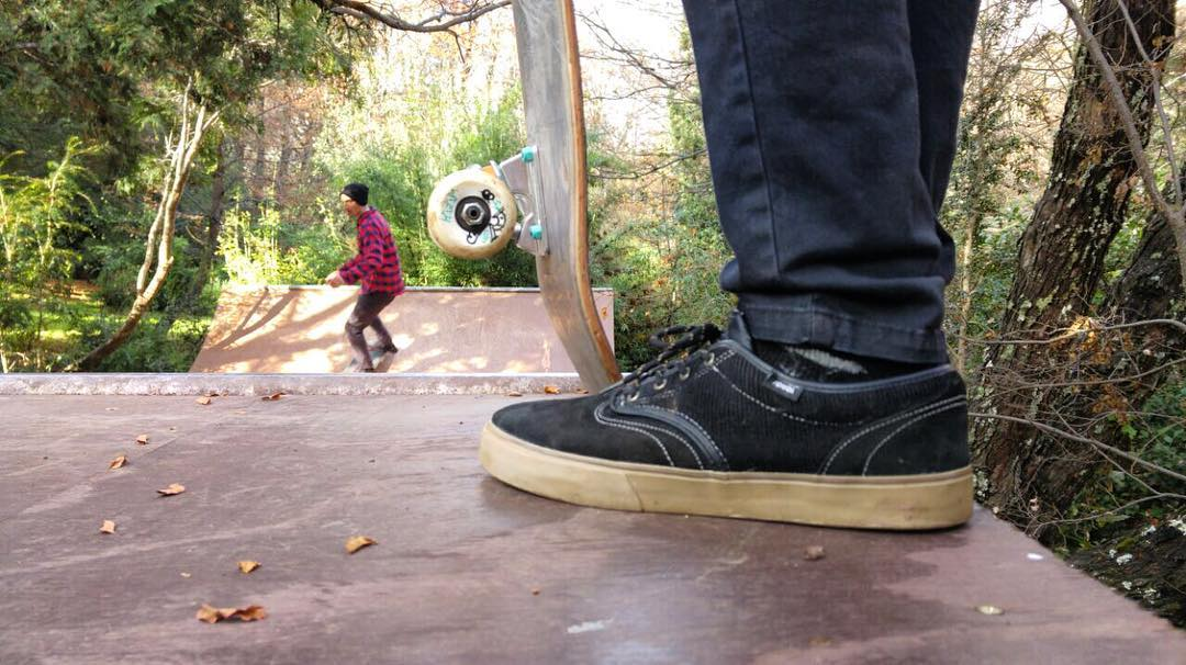 Skate in the woods