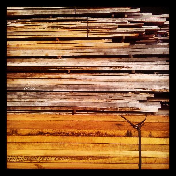 Hoy scouting de maderas :)