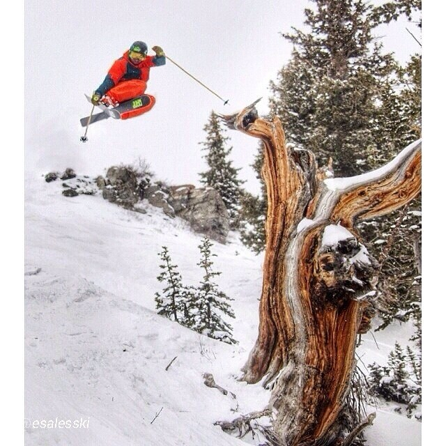 Here's another goody of #SoulAthlete, @andrewrumph, sending it over a weathered limber pine stump @snowbird. PC:@esalesski // @rampsports #highaltitudehappiness @shredoptics // #plantyoursoul #winterisnotoveryet