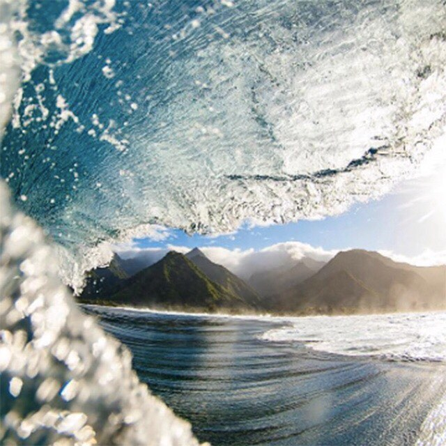 That moment when the waves wash over you. That's what we seek. Join us on our surf, photo and creativity themed excursions to #Tahiti and #Tofino in partnership with @tinyatlasquarterly and @earthmissions. Learn more via link in bio.
