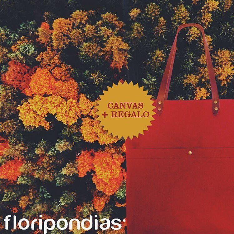 Pss! Te damos un consejo, Comprando en nuestra tienda www.sientobags.com.ar el Canvas bag verde o bordo te regalamos unas pantuflas increíbles de @floripondias_  #totebag #friends #diadelamigo #backpackers #exploreeverything