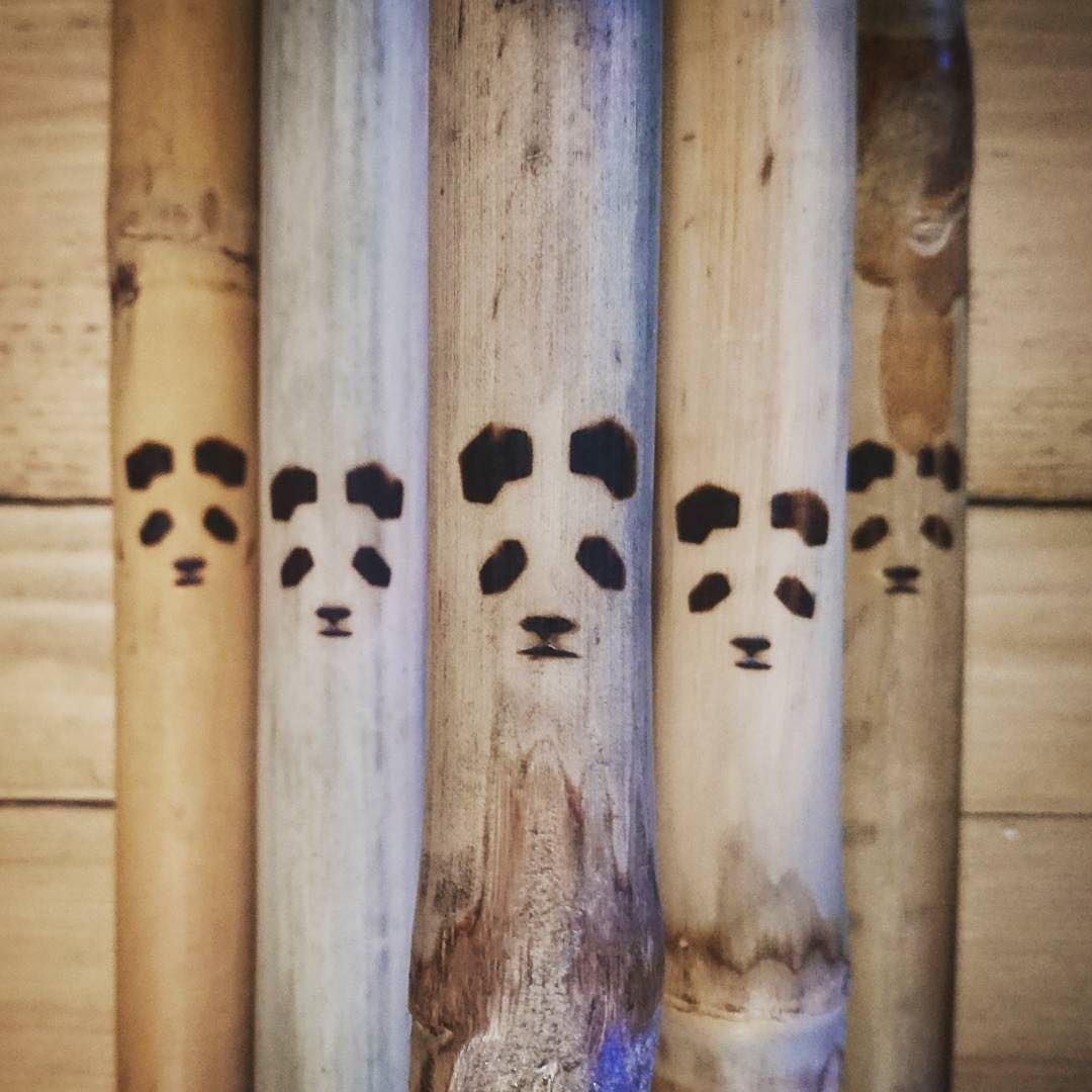 Panda Poles... Authentic character, like no other... Promo code SUMMER25 = 25% OFF at PandaPoles.com!  Repost: @acaciapiks  #PandaPoles #TribeUP!