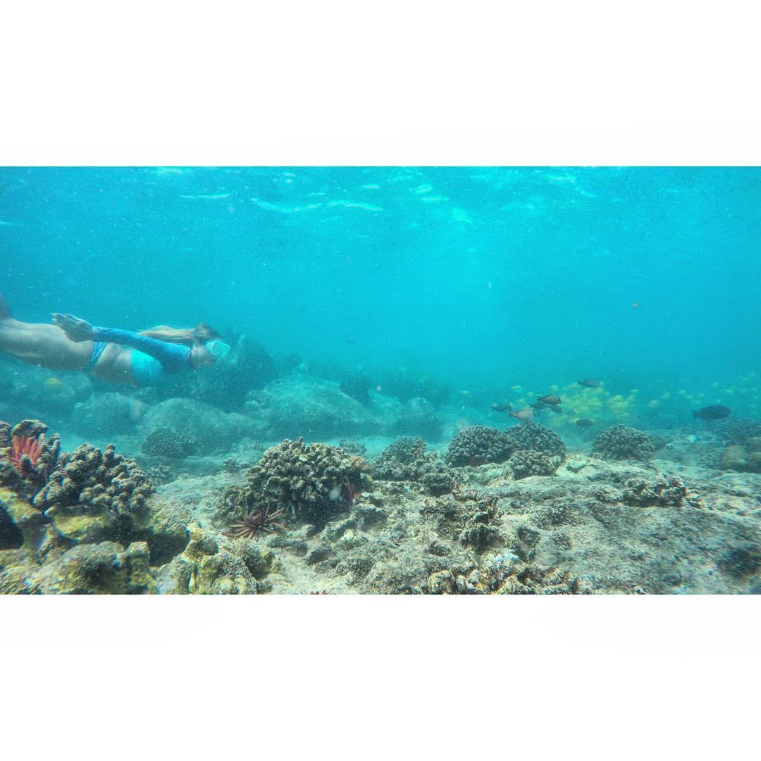 Fish Pursuit  #odinasurf #itakebioastin #livethetikilife #gopro