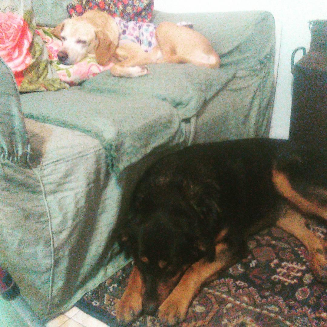 Bety & beba durmiendo una siestita.. Las chiquis..