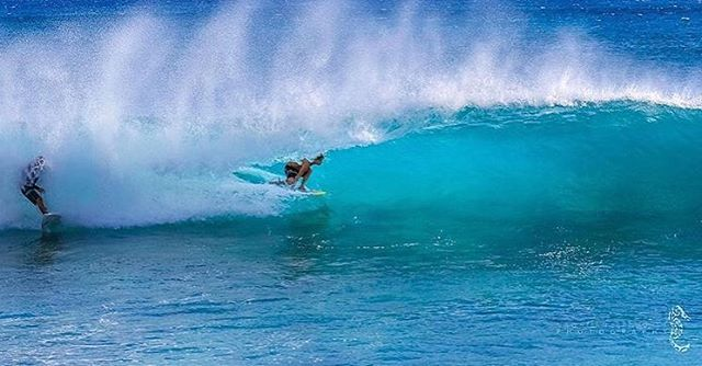 Dropping in on a Tuesday with Team Rider @sheldoggydoor #inspiredboardshorts | Photo: @hawaiianseahorse