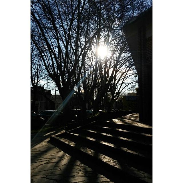 Mármol y sus encantos. #ph #josemarmol #arboleda #invierno #winter #cielo #sky #sunny #sunnyday #with #shadow #ig_argentina