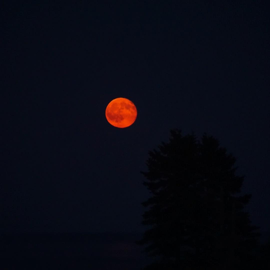 A beautiful full red moon came up over the ocean this evening!  Another classic on the coast of Maine! #optoutside #maine #mainetheway #fullmoon #redmoon #moonpics #sonya6000 #boothbayharbor