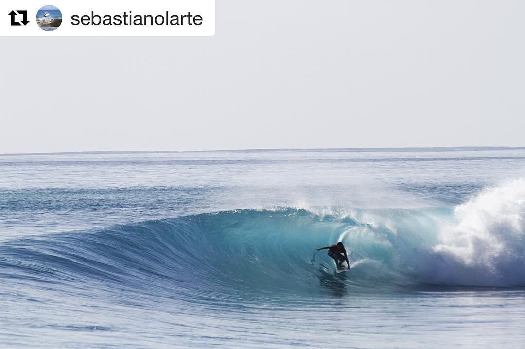 Representando FREELIFE en Uruguay y en el mundo ~ @sebastianolarte y sus postales desde Indo... #Repost @sebastianolarte with @repostapp ・・・ Perfección mañanera :) @chivipizza #chivipizza @misushi #misushi  @master_surfboards @freestylewatches_uruguay...