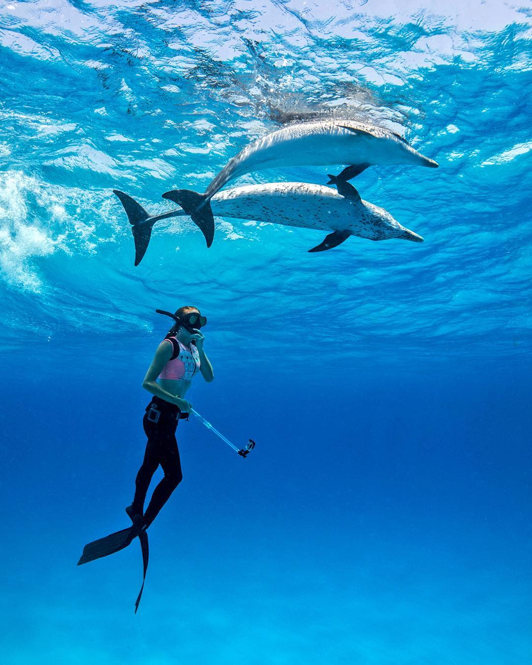 @sharksneedlove freediving with friends in the Bahamas. Photo by @katiegrudecki. #gopro #gopole #gopoleevo #freediving #dolphins #