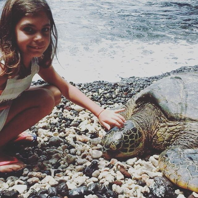 #chilimango #tortugas #hawai Mejor modelo imposible!!! #chilikidgo