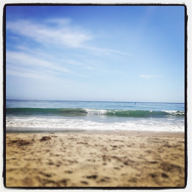 Dolphin spotting - Ventura County. #loveblue #cleanwater #pacific #loaliving #betterworld