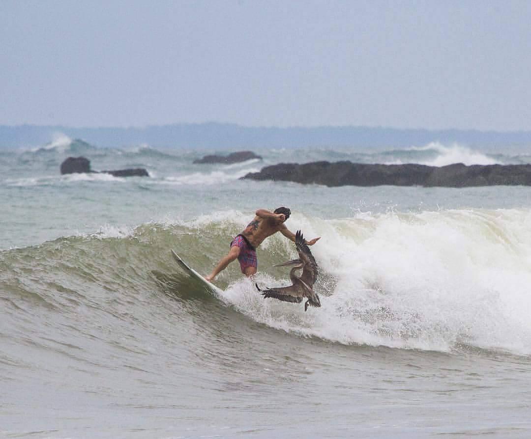 A luchar por esa ola!