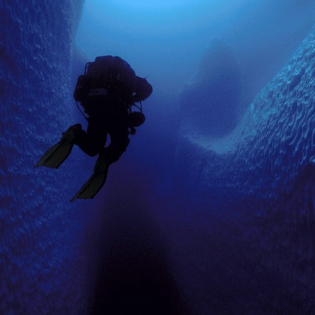 Deep blue #adventure #diving #underwater #icebergs #antarctica