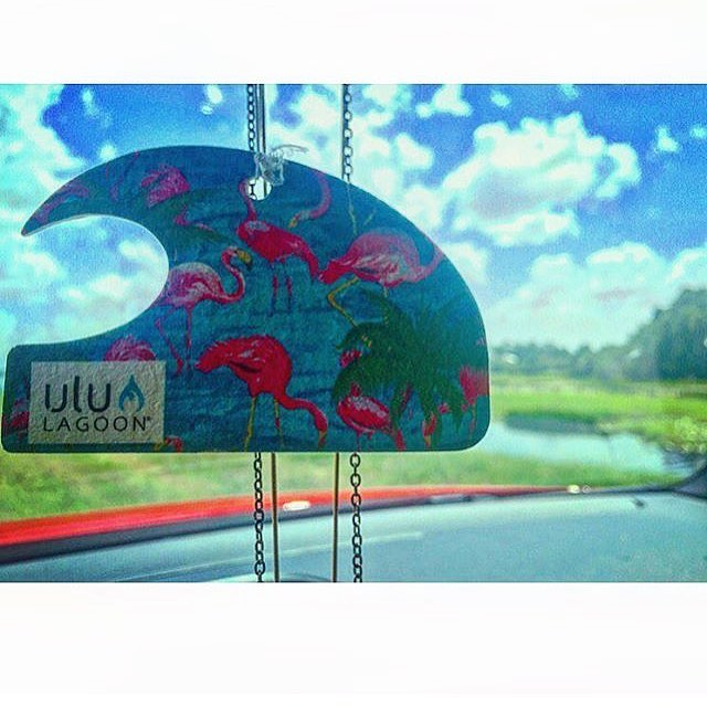 Surf Wax scented Miami Mini Wave air freshener on Miami looking sky. Shared by @vickyqued