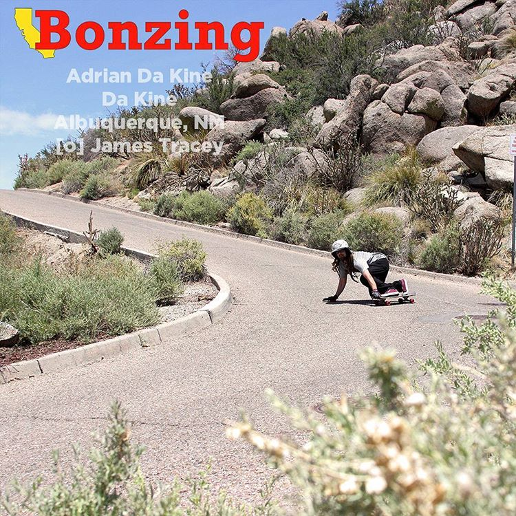 New Wallpaper Wednesday drops tomorrow! Who is it going to be? Where is it going to be at?  Get last months Wallpaper Wednesday at BonzingSkateboards.com.  #wallpaperwednesday #bonzing