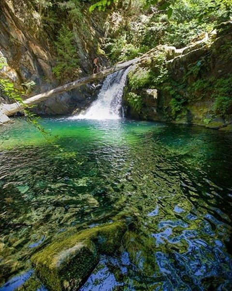#Flowfold ambassador @connormcnulty knows how to beat the heat: Find a secret swimming hole.