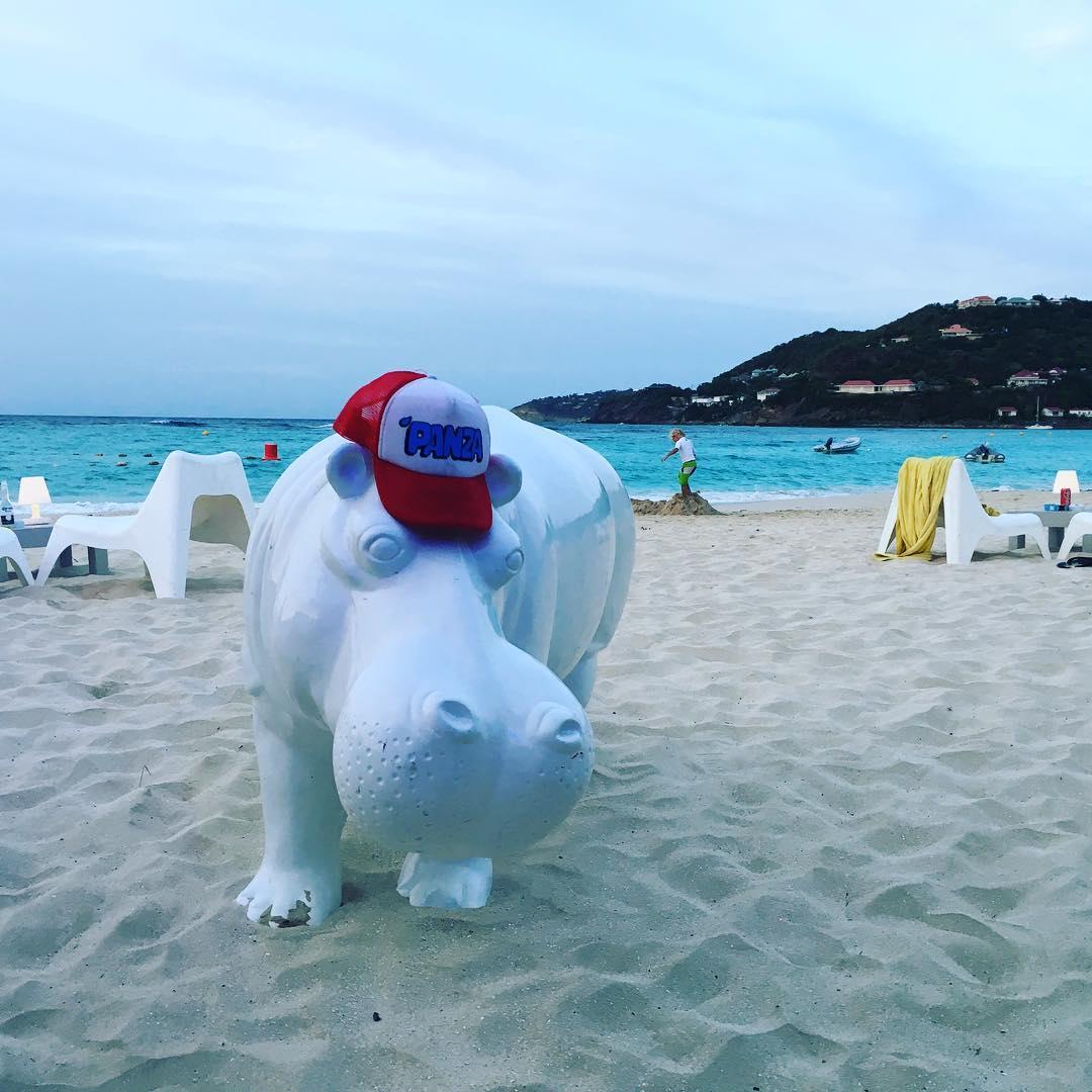 Hipólito, el hipopótamo que mete panza #metiendopanza en el #caribe  Gorra Mionca disponible en www.panzapeople.com