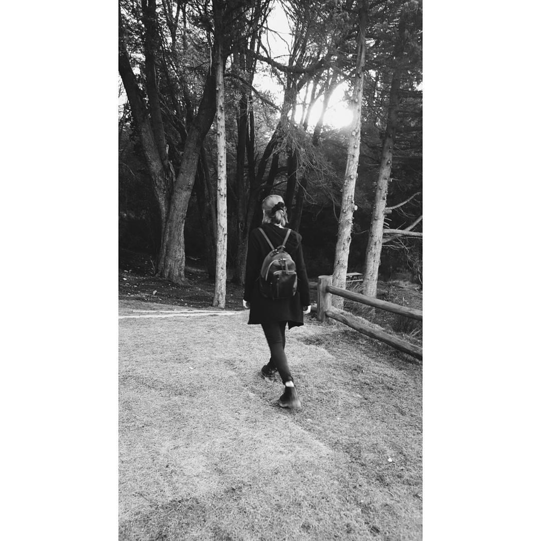 Mochila Nuez Negra / envíos a todo el país en www.mambomambo.com.ar  #patagonia #backpack #mochila #bosques #sur #woods #itisbetteroutside #goexplore