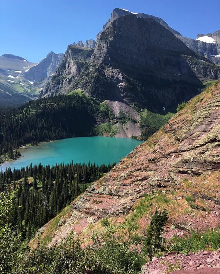Team @1percentftp had an adventurous #ClimateHike in @glacier_national_park, enjoying incredible scenery and wildlife. Our team raised nearly $8,100 for #climatechange awareness and action, while the overall hike reached nearly $66,000! Thanks...