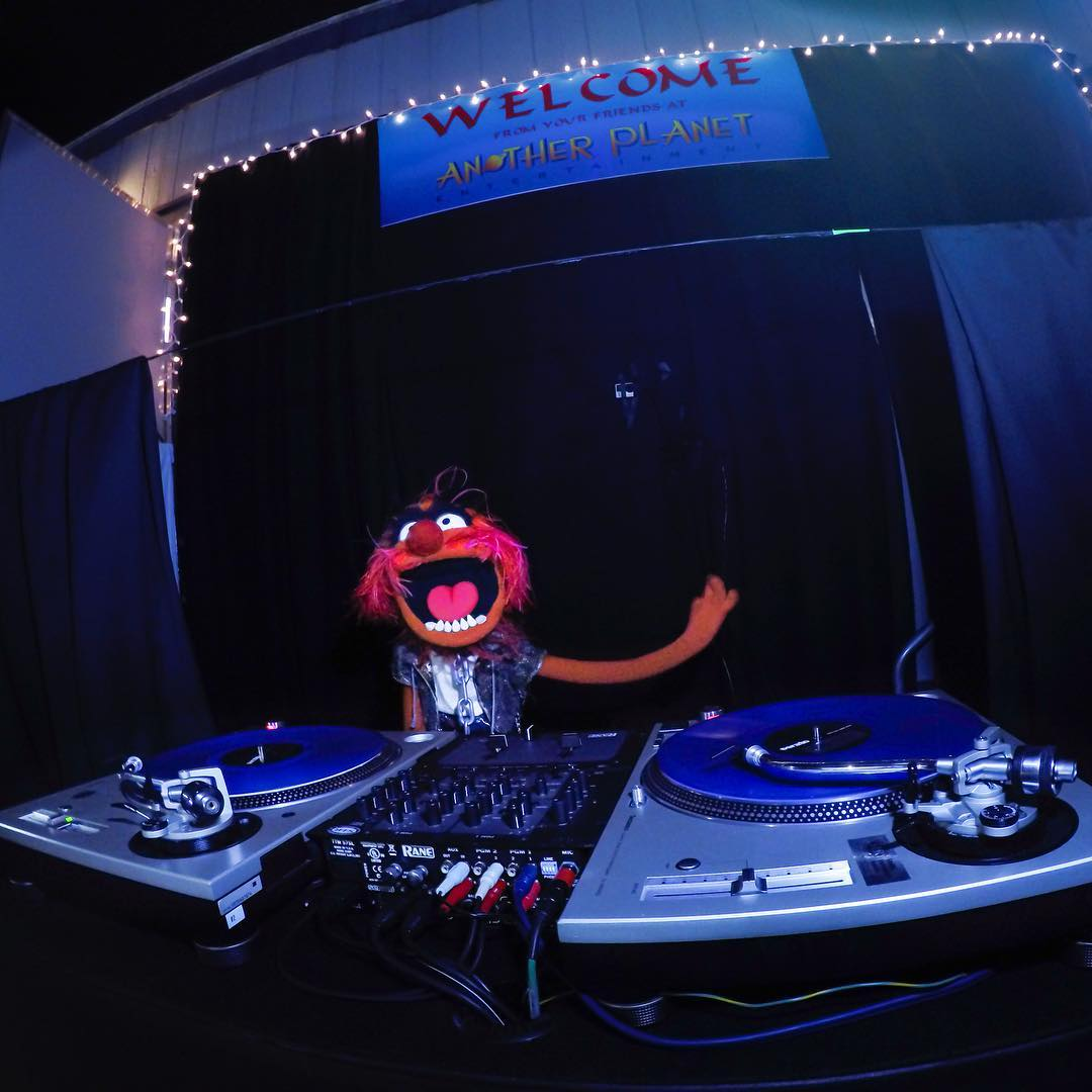 #Animal of @themuppets closes out @outsidelands with a #DJ set at the @apeconcerts after party! #