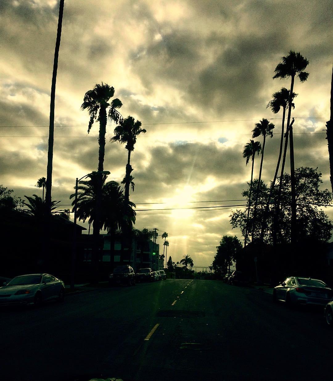 Long Beach, CA looking quintessential California with tropi skies. #LBC