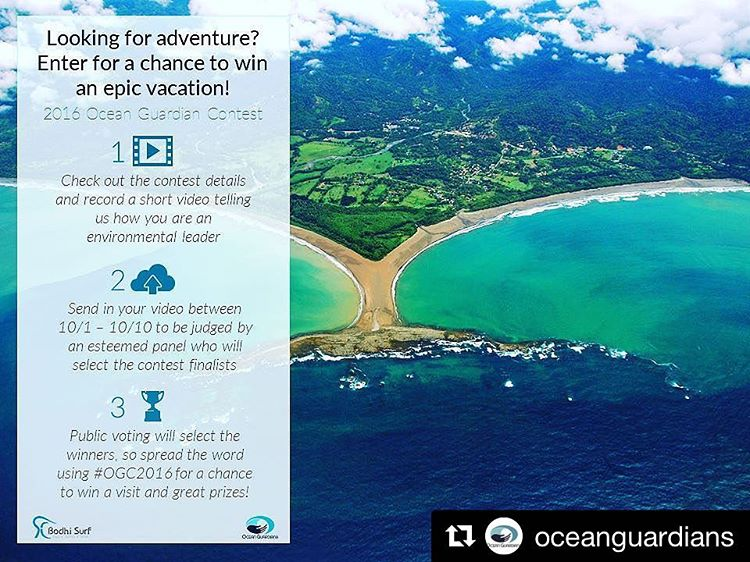 Follow @oceanguardians for all the updates and news on this year's #OGC2016 // For this year's Ocean Guardian Contest, all you have to do is answer the following question in a video of two minutes or less: How are you an environmental leader? The...