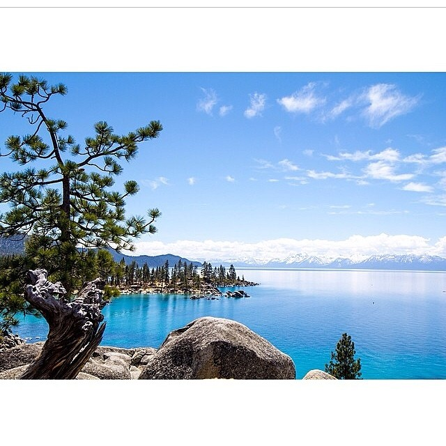 'This Is Tahoe [20] ~ 05.07.14' Drinking the lake's water often requires no filter...just like this photo from @alexshawphoto #thisistahoe #tahoemade