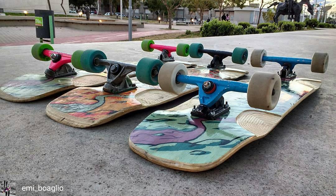 @Regrann from @emi_boaglio -  Los pibe Zero #Longboard #Skate #SlySkateboards #SlyZero #Dominalascalles #Regrann #truecolors