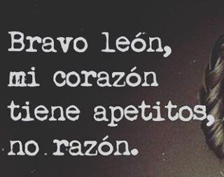 #BravoLeón