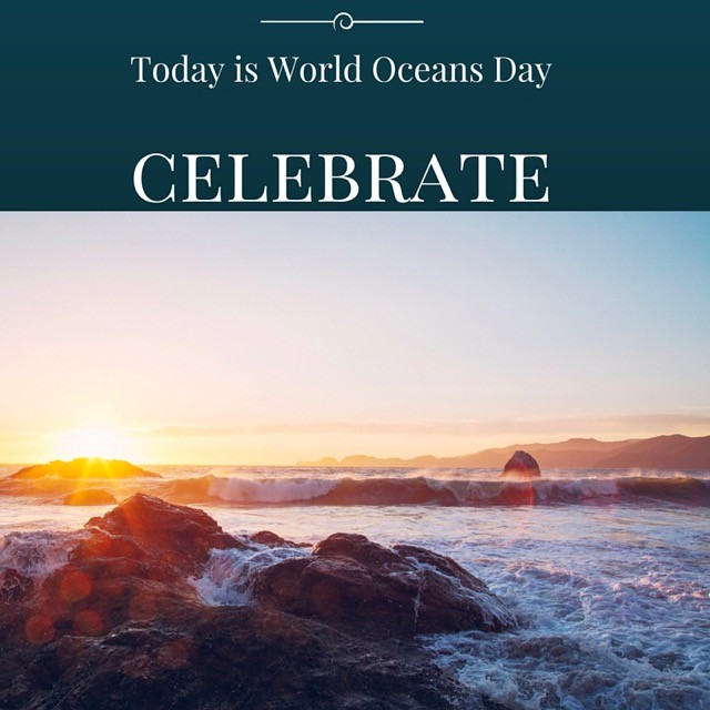 We need oceans for countless reasons but the oceans need us to help protect and restore them.  Join TFG in the cause and celebrate our oceans!