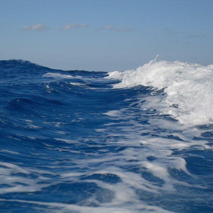El inmenso e imponente oceano, compuesto de diminutas gotas. Aca si que la union hace la fuerza!  #all_my_own #ocean #oceano #cozumel #blue #estaes_america #agean_fotografia #fotografia #sevienelaola #picoftheday #naturaleza #creacion #natural #nikon...