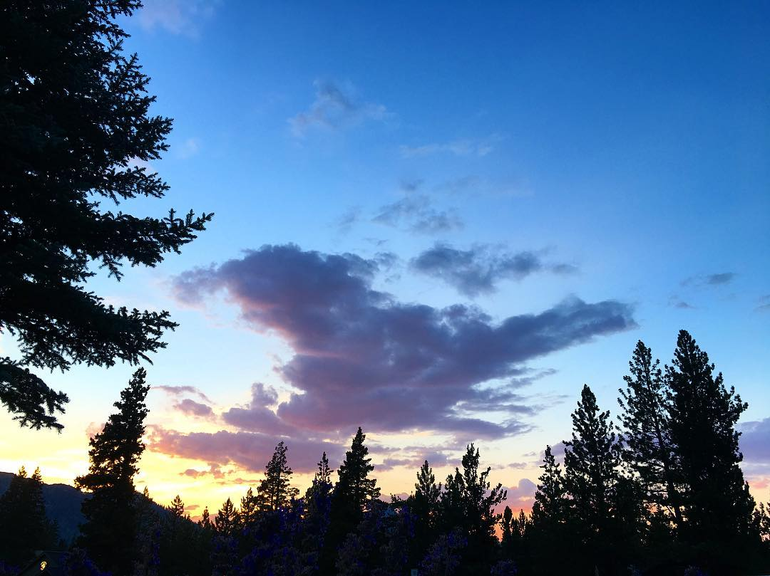 Sunset the other night in Meyers, CA. We are always inspired by where we live and work here in a Tahoe. #inspiredbynature #drivenbydesign #risedesigns #risedesignstahoe #tahoesouth #tahoesnaps #laketahoe #goldenhour #chasingsunsets  #angorapeak #pines...