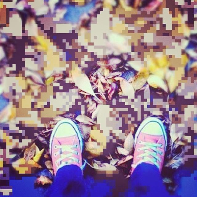 Hermoso otoño