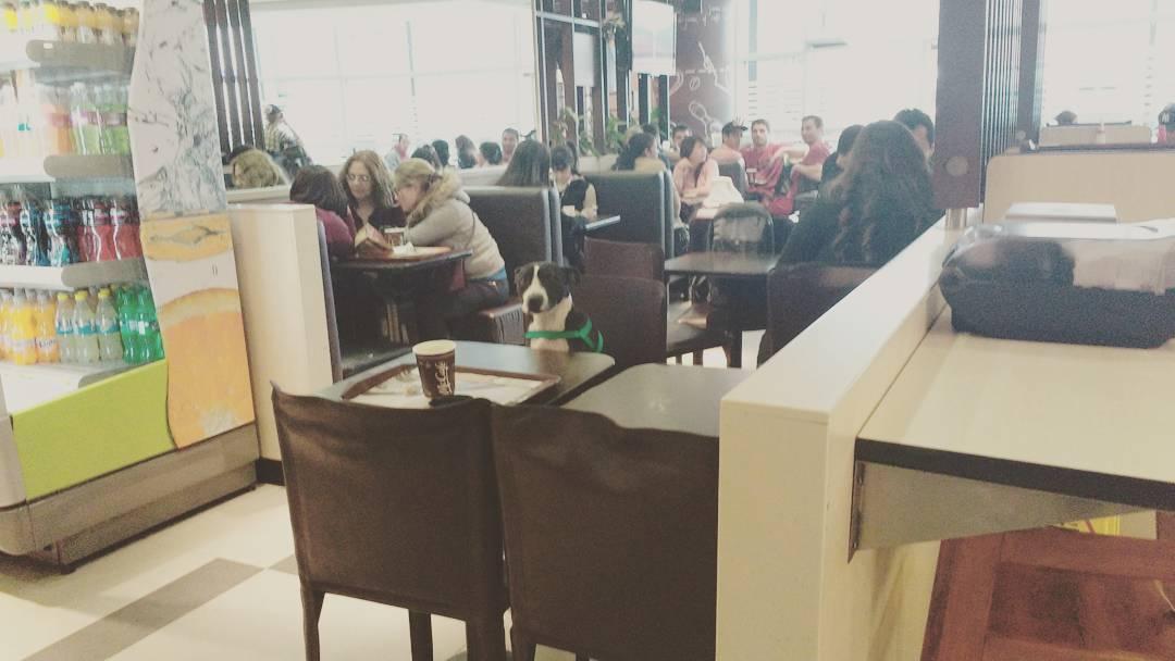 Cafecito? #mcdonalds #ezeiza #suyay