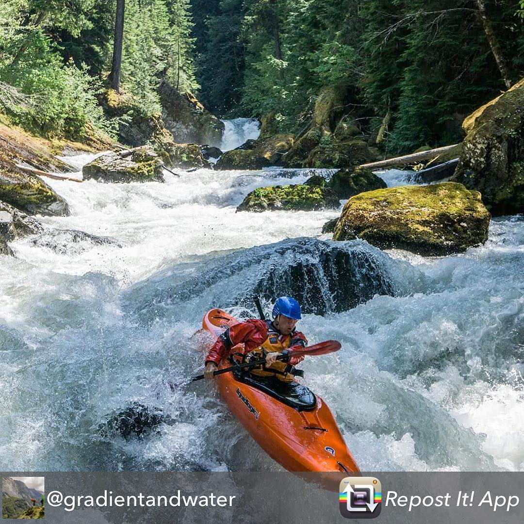 Beautiful photo from @gradientandwater of the Cispus River in WA state. #giffordpinchot #kayak #forest #waterfall